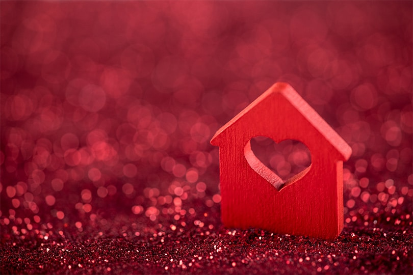 Home Security Valentine
