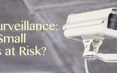 Video Surveillance in Orlando: Is Your Small Business at Risk?