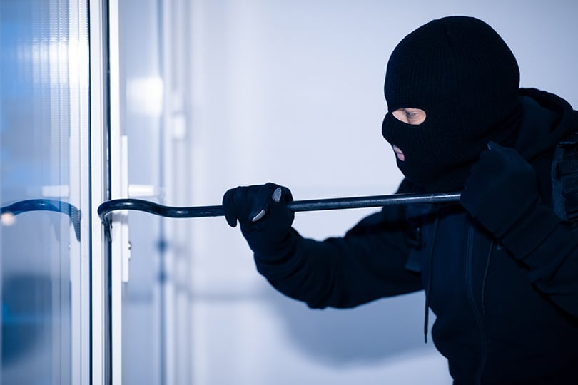 Burglary Rates Are Rising
